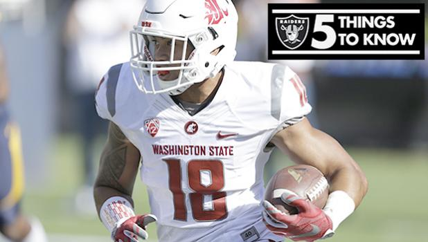 Defensive Back Shalom Luani [photo from Raiders.com]