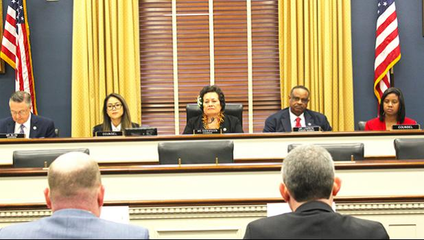 Chairman Amata during joint hearing on Broadband Access for Remote Areas.  [photo: courtesy]