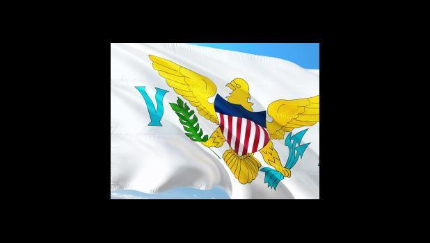 Virgin Islands Flag (image from website)