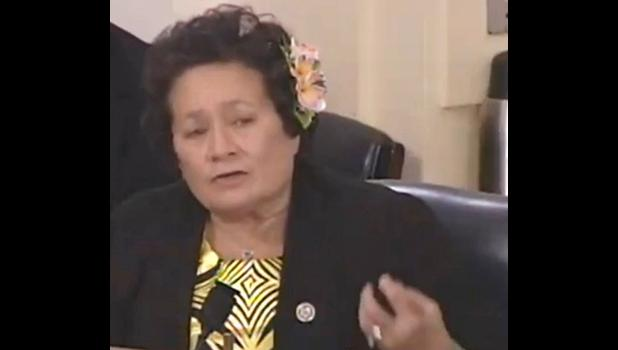 Rep. Amata questioning expert witness