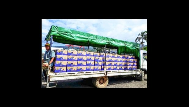 Truck carries bananas for export to the port in Samoa.