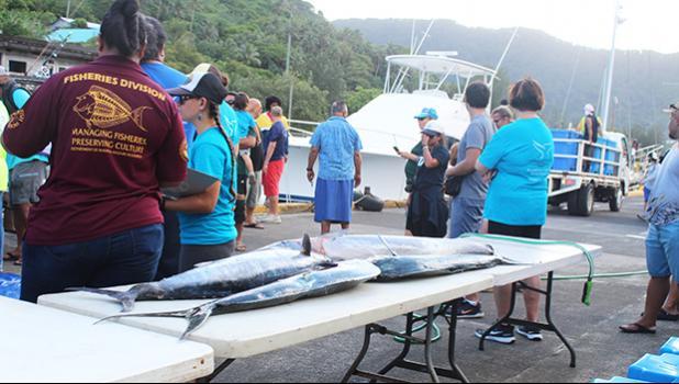 Fish caught during the 4th Annual Fagota Mo Taeao Open Fishing Tournament
