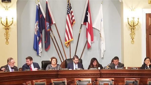 Congresswoman Amata in the Subcommittee on Indigenous Peoples