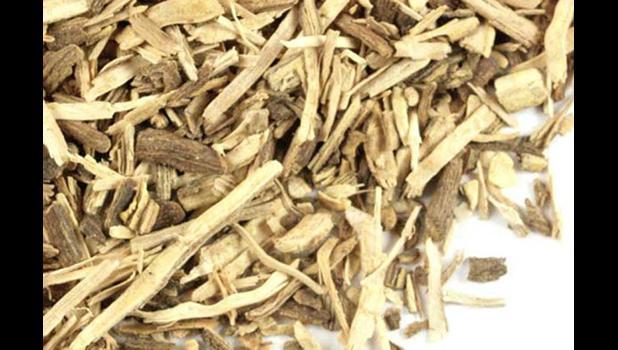 Kava root