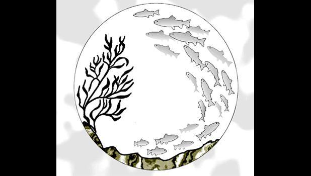 Magnunson Sevens Act logo