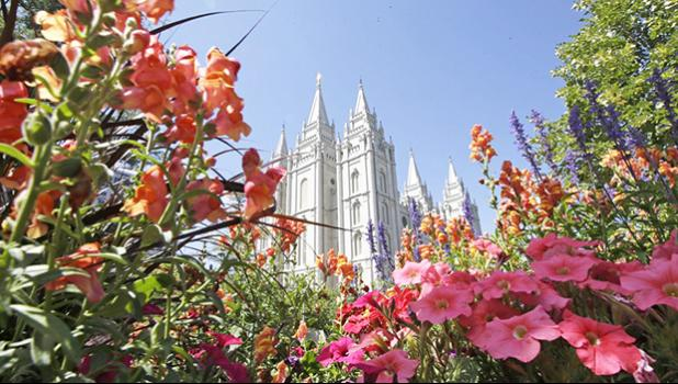 flowers bloom in front of the Salt Lake Temple