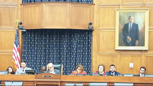 Congresswoman Amata and other Insular Representatives