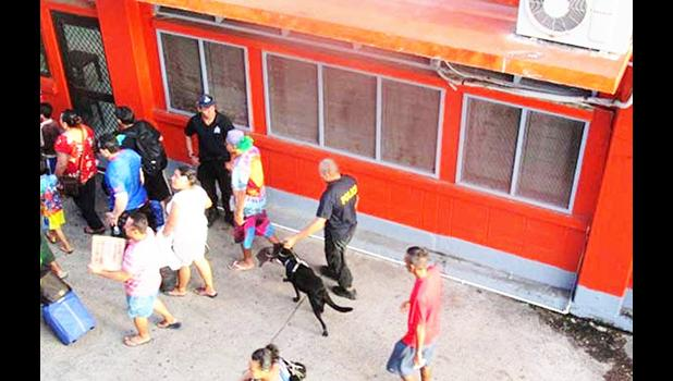 File photo of police canine on drug sniffing duty at Mulifanua Wharf