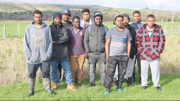 Seasonal workers in New Zealand
