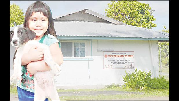 The Veterinary Clinic of American Samoa with child and dog standing in front