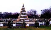 File photo of National Christmas Tree from past year.