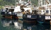 Longline boats tied up at the wharf in Pago Pago harbor, [SN file photo]