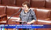 Congresswoman Amata speaking to the House