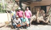 ASPA crew with huge tree stump