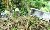 Illegal dumping is on the rise in American Samoa — especially down hillsides next to roads in outer villages. As proved in this photo, out of sight does not mean it exists no more — highly damaging toxic fluids from such dumped appliances seep into our to our drinking water, soils, oceans and coral reefs. NPAS has formed an Illegal Dumping Task Force to help clean up and stop this practice. It comprises the Office of Samoan Affairs, National Park of American Samoa and other local agencies.  [Courtesy photo]