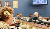 Congresswoman Amata speaking into microphone in committee room.