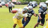 Leone Lions ball carrier breaking out to the sidelines