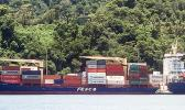 The Fesco Askold container ship in Pago Pago harbor