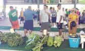 Lt. Gov. at Manu'a Farm Fair