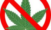 Just say no to marijuana logo
