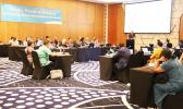 Delegates at the Pacific Heads of Nursing meeting