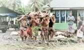 Samoan men carrying umu makings