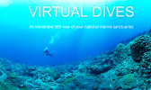 National Marine Sanctuaries photo of dive