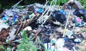"""A look at the piles of trash currently dumped – illegally — on the side of the road in Poloa village. The litter problem in this area has become so bad that passersby are asking, """"Out of sight, out of mind?""""  [photo: BC]"""