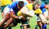 David Pocock inaction against Samoa
